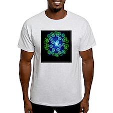 Buckminsterfullerene T-Shirt