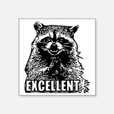 "Excellent Raccoon Square Sticker 3"" x 3"""