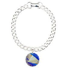 Polarised LM of acenapht Bracelet