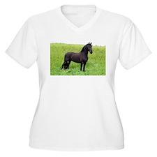 Friesian 1 T-Shirt