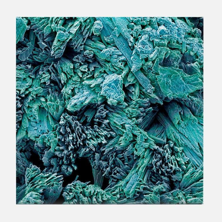 Gypsum crystals, SEM Tile Coaster