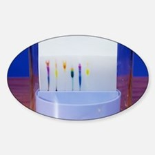 Paper chromatography Decal