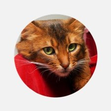 "Lovesick Somali cat 3.5"" Button"