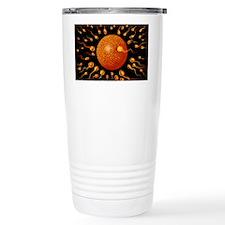 Sperm fertilising egg Travel Mug