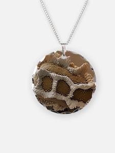 Snapdragon seed, SEM Necklace