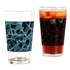 Spongy bone, SEM Drinking Glass