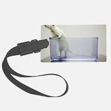 Sprague-Dawley laboratory rat Luggage Tag