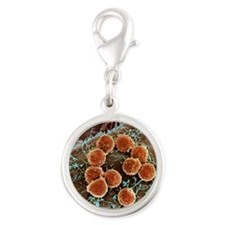 T lymphocytes and cancer cell, Silver Round Charm