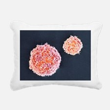Stem cells, SEM Rectangular Canvas Pillow