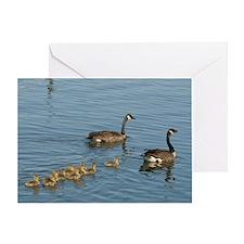 MP_Geese_4 Greeting Card