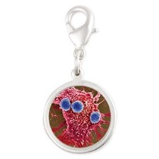 T lymphocytes and cancer cells Silver Round Charm