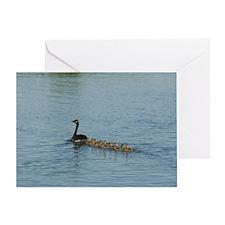 MP_Geese_2 Greeting Card