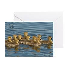 MP_Geese_3 Greeting Card