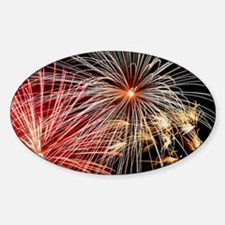 Time-exposure image of a firework d Decal
