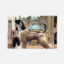 Afghan Hounds in Afghanistan Rectangle Magnet