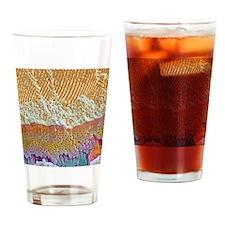Tooth enamel formation, SEM Drinking Glass