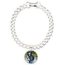 Australian Shepherd Pico Bracelet