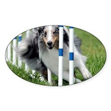 Shetland Sheepdog Blast Decal