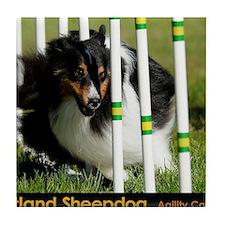 Shetland Sheepdog Jackpot Tile Coaster