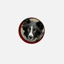Border Collie Puppy Mini Button