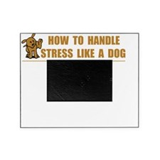Stress Like Dog Picture Frame