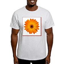 Butterscotch Osteo T-Shirt