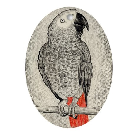 African Grey in Pencil Oval Ornament