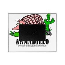 Cartoon Armadillo by Lorenzo Travers Picture Frame