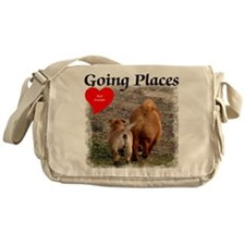 Friendship - chow chows - chinese sh Messenger Bag