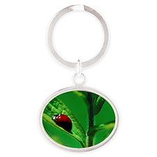 Ladybug on a Leaf Oval Keychain