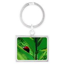 Ladybug on a Leaf Landscape Keychain