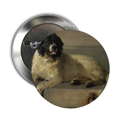 """Newfoundland-Landseer Resting by the 2.25"""" Button"""