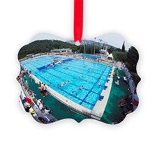Underwater hockey match Picture Ornament