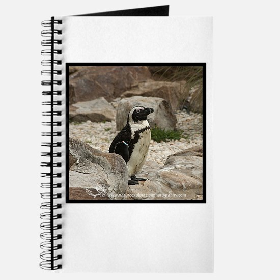 South African Penguin I Journal