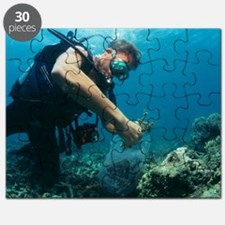 Underwater biological research Puzzle