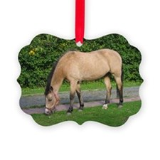 New Forest Pony Picture Ornament