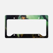 Underwater research License Plate Holder