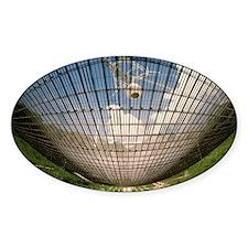 Underside of Arecibo radio telescop Decal