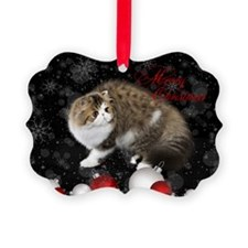 Persian Kitten Christmas Card Ornament