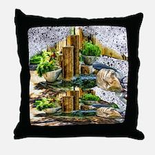 pillar fountains Throw Pillow