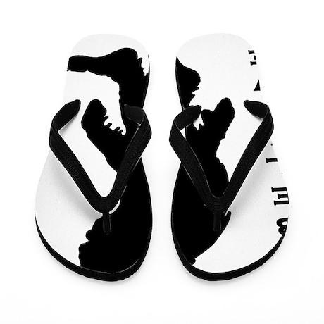 I believe Flip Flops
