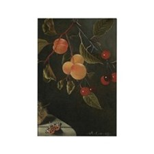 Antique Painting of Fruits and Nu Rectangle Magnet