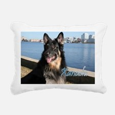 00cover-xanadu-midas Rectangular Canvas Pillow