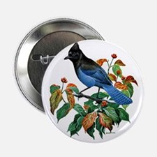 "A Blue Stellers Jay in Dogwood Tree 2.25"" Button"