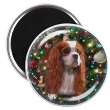 Blenheim Cavalier Christmas Background Magnet