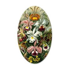 1904 Orchids Art Forms of Na Wall Decal
