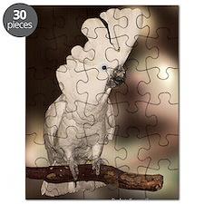 Umbrella Cockatoo Puzzle