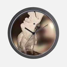 Umbrella Cockatoo Wall Clock