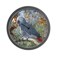 Sunlight on Feathers Wall Clock