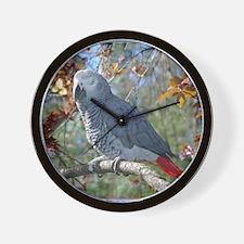 Sunlight on Feathers Wall Clock